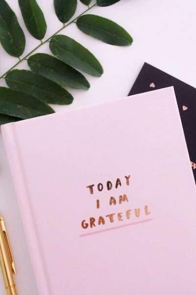 Today I am grateful.
