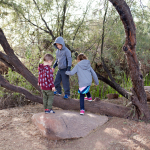 3 kids playing by trees and rock